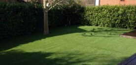 Forever Green Lawns