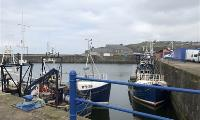 J & E Hall units impress in fishing industry project