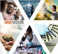 ONEVISION: CREATING A GLOBAL STANDARDIZED LABORATORY NETWORK FOR SGS LIFE SCIENCES