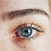 5 Eyebrow shapes and how to pick the right one