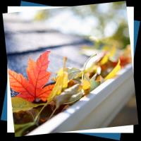 How To Clean Your Gutters Safely Using Ladders