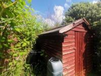 The Japanese Knotweed growing season in full swing – what do you need to know?