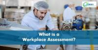 What Is A Workplace Assessment And Why A Business Needs One?