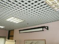 What type of suspended ceilings should I have?