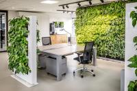 Are Green Living Walls Commercially Acceptable?