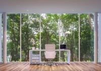Top 10 Ideas for Decorating Your Office