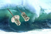 New TROGAMID® Liquid Level Switches Feature Very High Chemical Resistance (OLT)