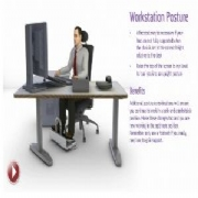 POSTURE GROUP LAUNCHES A SINGLE USER ONLINE WORKSTATION ASSESSMENT www.workstationassessments.co.uk