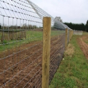 Otter Fencing from McVeigh Parker used to protect Hawbridge Fishery in Worcestershire