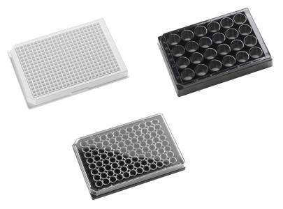 Glass Bottom Microplates for Imaging Applications