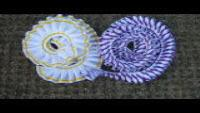 Pantone matched conference rosettes