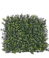 New Artificial Buxus Hedge Mat in stock. Premium quality.