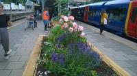 PUTNEY STATION SAYS YES TO BEES & RAILWAY SLEEPERS!!