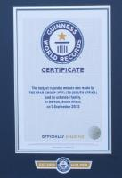 Guinness World Record achieved by using a Riggs Autopack depositor
