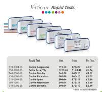 Rapid Tests – 20% discount