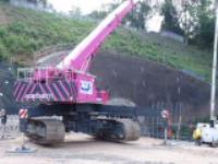 AGD's pink crane raising money for Cancer Research