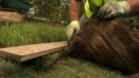 How To Lay Meadowmat Wild Flower Turf