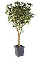 Ends tomorrow - 20% OFF SALE on our Premium Quality Artificial Trees