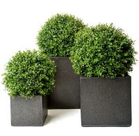 SPECIAL OFFER on Artificial Boxwood Balls