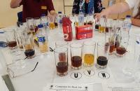 Microbial Quality of Beer