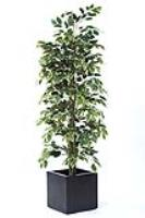 We sell ONLY Premium Quality Artificial Trees