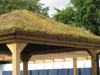 Living Roofs And How They Can Help Your Garden Thrive