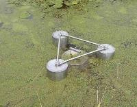 Duckweed Control And Removal From Ponds