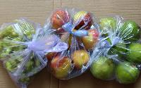 POLYTHENE AND ITS USE IN THE FOOD INDUSTRY