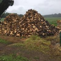 Firewood & Forestry with A & C Douglas Jones