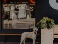 Recycling is easy for Bross Bagels