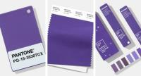When will Pantone's Colour of the Year 2019 be announced and why is it important?