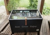 Personalised Seed Box In 3D
