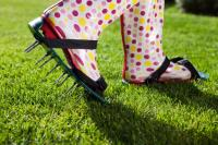 How To Help Your Lawn Recover From Drought Quicker