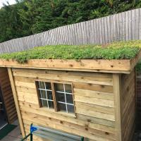 Green Roofs For Garden Buildings