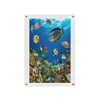A0 Clear Wall Mounted Photo Frames