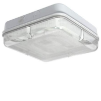 White/Prismatic IP65 High Frequency Square Polycarbonate 28w 2D Bulkhead Light