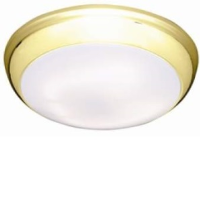 38w 2D High Frequency Bulkhead Light With A Brass Trim