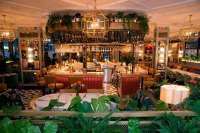 Ambient LED Lighting Solutions For Restaurants