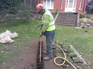 Tree Excavation Air Spade Services