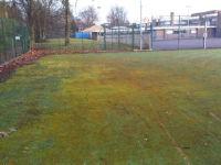 Artificial Turf Moss And Algal Chemical Treatments