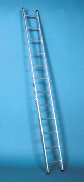 4m Long Single Section Ladders