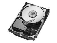 Seagate SEAGATE CHEETAH 10K.7 73GB **Refurbished** ST373207LW-RFB - eet01