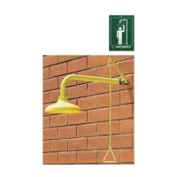Wall Mounted Drench Shower