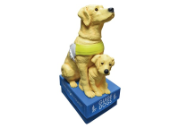 Guide Dogs Floor Collector