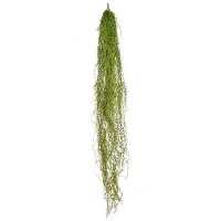 Artificial Airplant Trail - 152.5cm, Green/brown