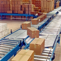 Distribution Centre Carton Conveyors