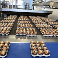 Reliable Food Conveyor Systems