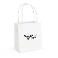 Brunswick Small Paper Bag (QB4013)