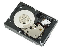 Dell 300GB SAS 6Gbps 15k 2.5 Hybrid HD Hot Plug Fully Assembled 400-24988 - eet01