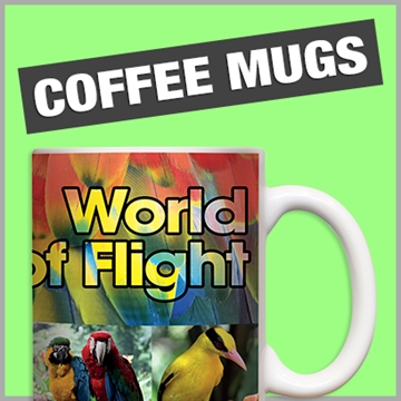 Drinkware Promotional Products and Branded Merchandise Suppliers